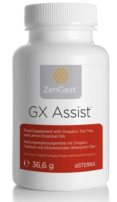 GX Assist® GI Reinigungsformel