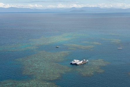 [:fr]Ponton sur la barriere de corail[:en]Great barrier reef, moore reef, pontoon[:]