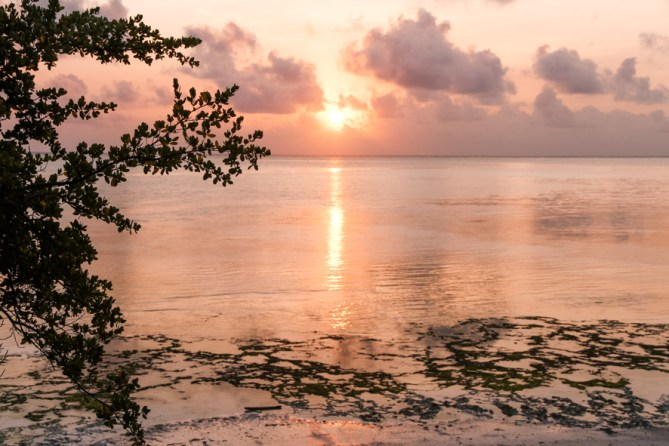 [:fr]Coucher de Soleil a Zanzibar[:en]Sunset in Zanzibar[:]