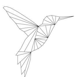 image-colibri-geometrique