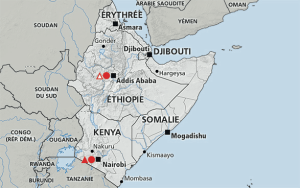 Corne de l'Afrique