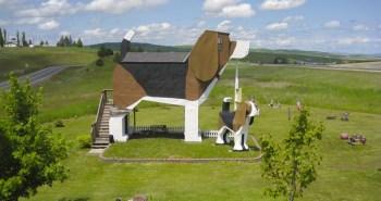 hôtels insolites The Dog Bark Park Inn 1
