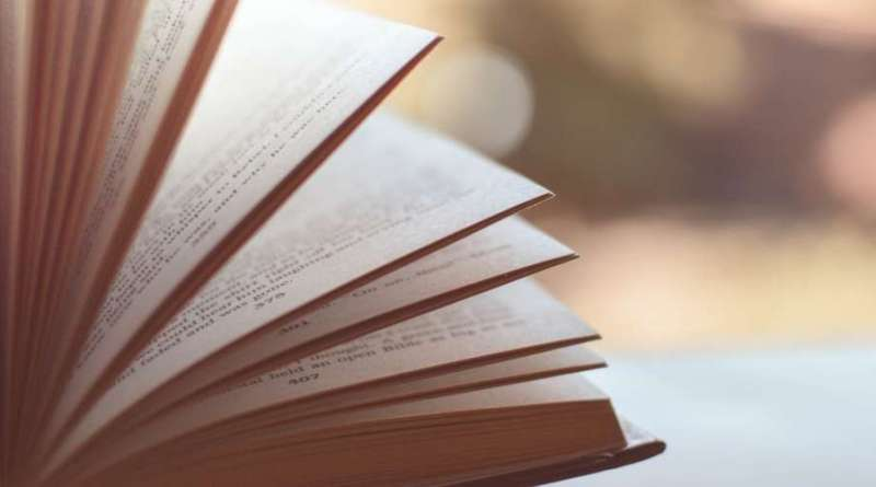 Prix littéraires 2019 - Le blog du hérisson