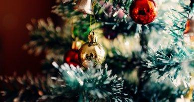 Les vraies origines des traditions de Noël - Le blog du hérisson