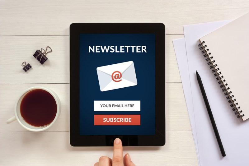 S'inscrire à la Newsletter Le P'tit hérisson - Le blog du hérisson
