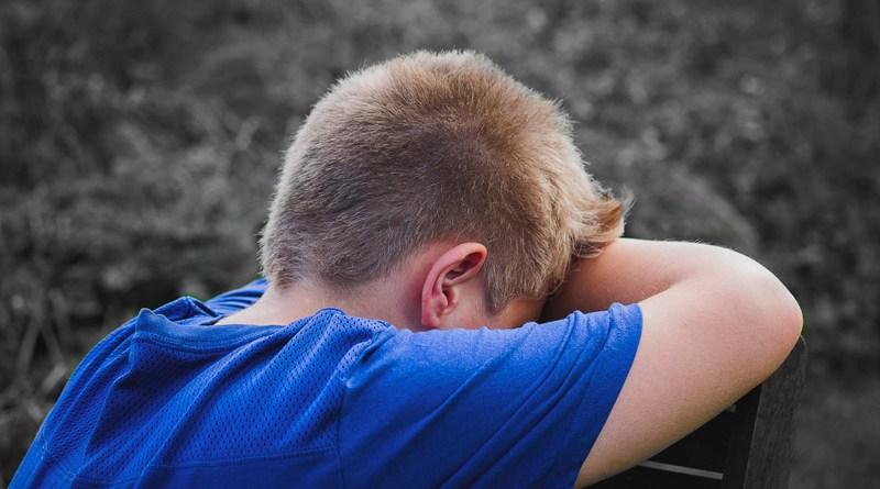 Harcèlement scolaire : comment le détecter et que faire ? - Le blog du hérisson