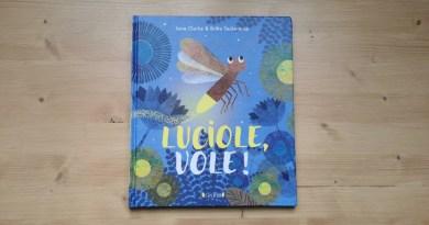 Luciole vole ! Un livre jeunesse - Le blog du hérisson