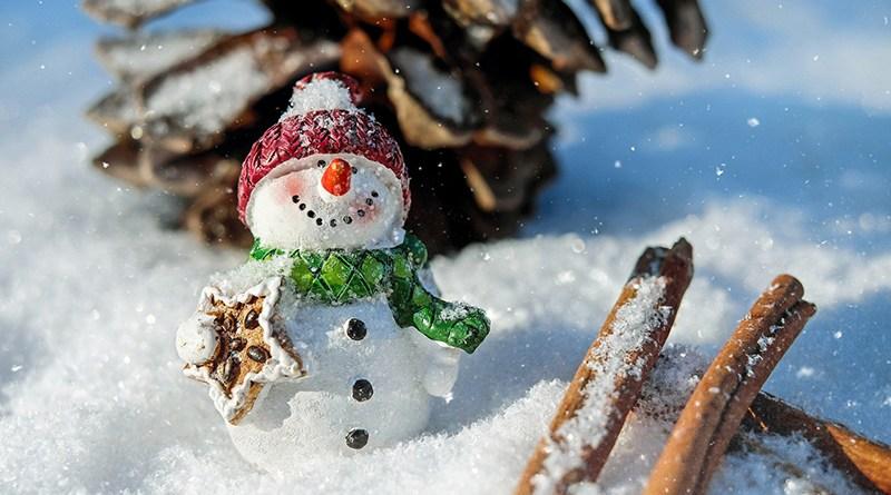 Noël 2020 : prenons soin de nous et des autres - Le blog du hérisson