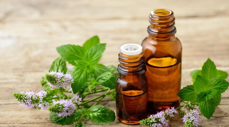 Soigner les maux de l'hiver avec l'aromathérapie - Le blog du hérisson