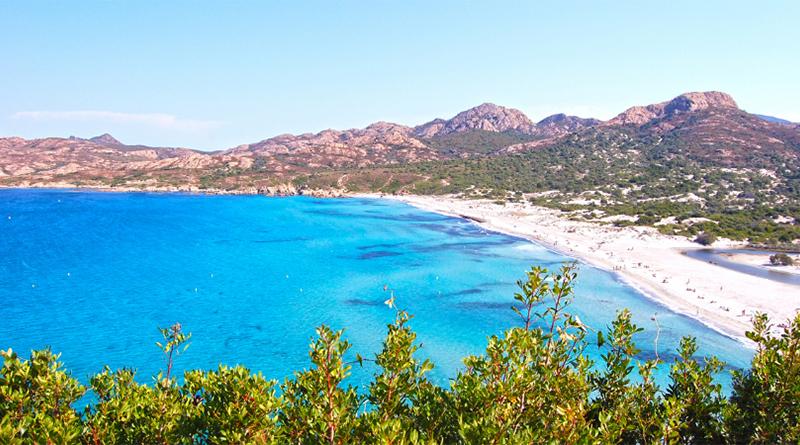 Top 5 des plus belles plages de Corse - Le blog du hérisson