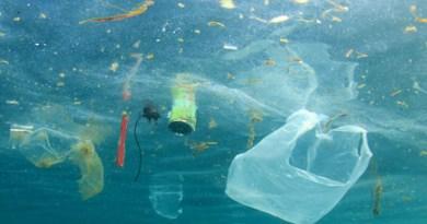 Nettoyez les océans depuis votre salon ! - Le blog du hérisson