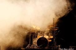 concert Bron 2015 vaincre les maladies lysosomales (2)