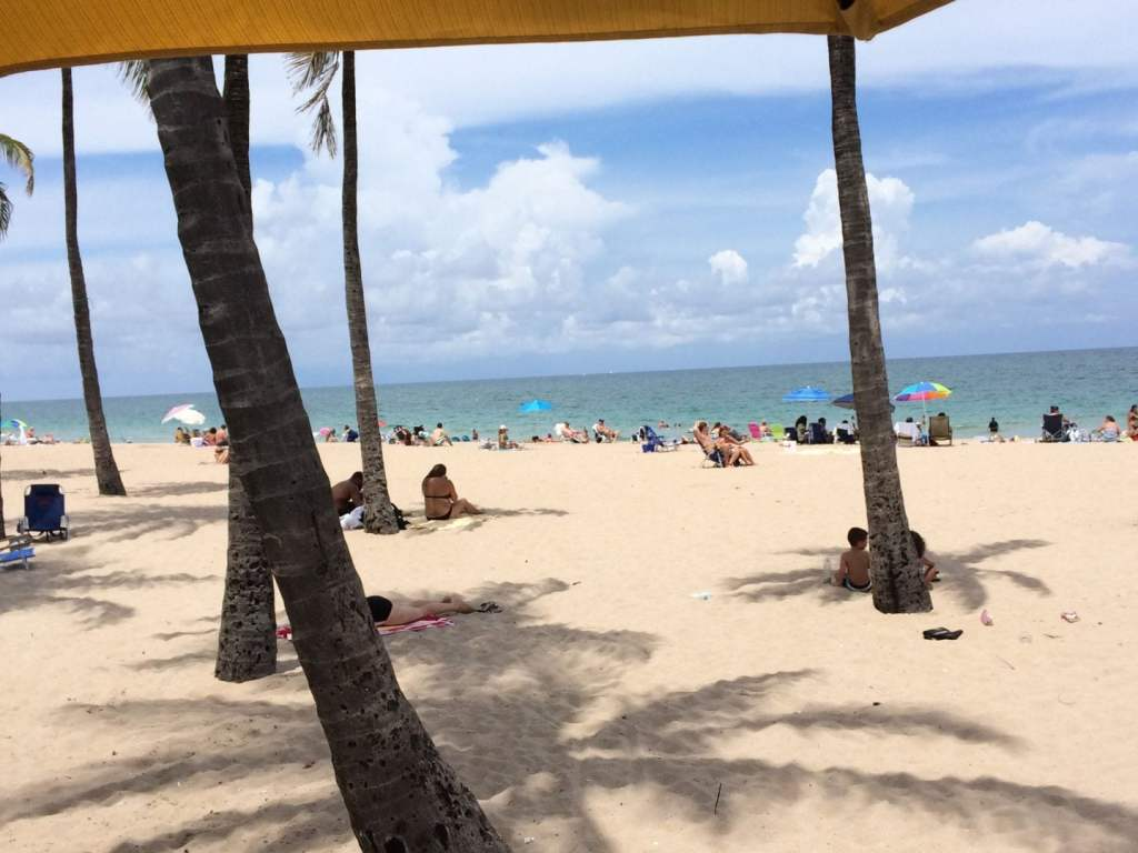 Impressions de voyage Miami #1