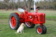 80_escarret_gilles_1_farmall_super_fcd rowcrop_1956