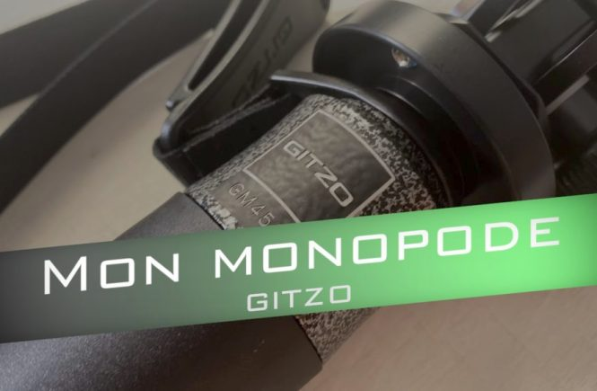 Meilleur Monopod gitzo