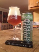 11- Fiddlehead Brewing - Second Fiddle: when it comes to IPA/DIPA, Vermont comes first. And with this sweet double IPA, this one is no exception. Very fruity and bitter with a strong body. I am sure people will chase this one a bit more in 2015 !
