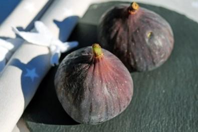 figs-1620614_1920
