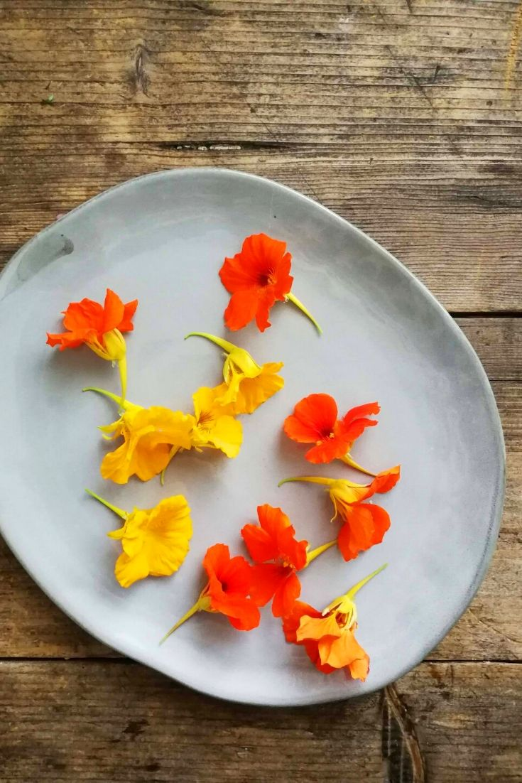 edible flower cooking