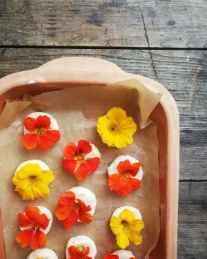 nasturtium edible flower recipe