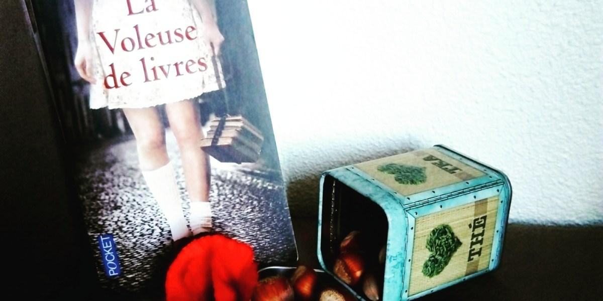 Avis de lecture sur le roman la voleuse de livres de Markus Zusak