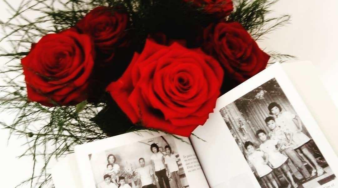 avis de lecture sur le roman D'abord ils ont tué mon père de Loung Ung
