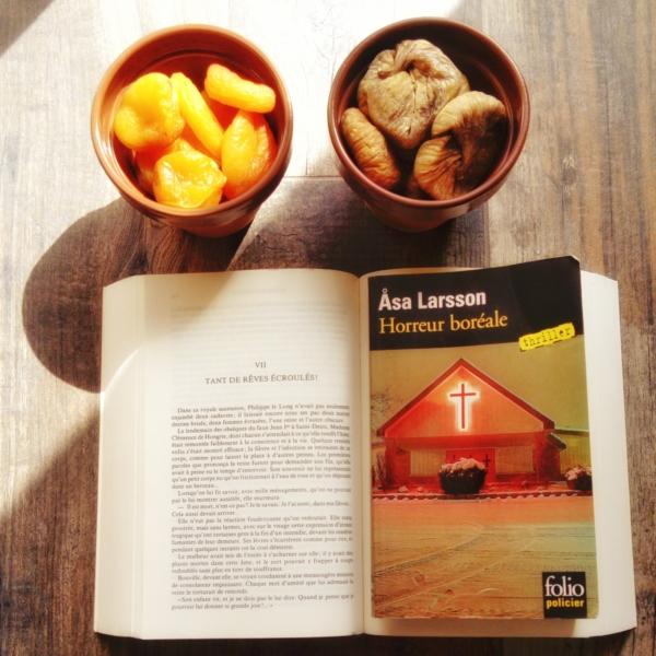 Avis de lecture sur le roman polivier Horreur boréale de Asa Larsson