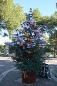 albero-della-pace-5