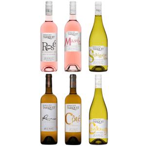 Domaine Tariquet Probierpaket 6 Flaschen