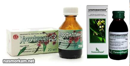 chlorophyllipt گلو را شستشو دهید: آموزش. بررسی ها نحوه اعمال ابزار؟