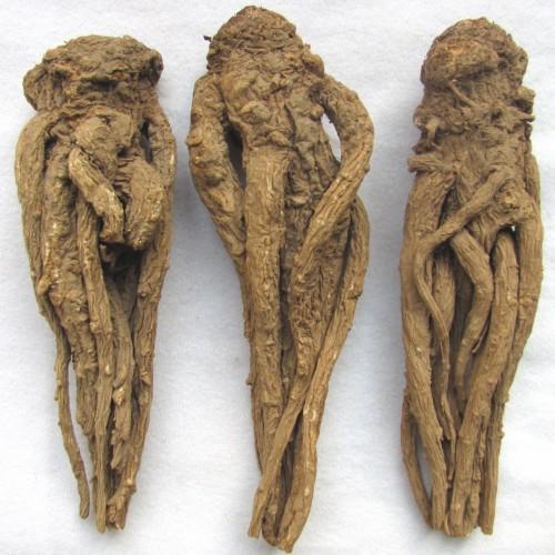 erekcja z vesikulite