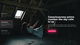 cybercarousel21.jpg