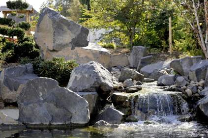jardin-botanique-parc-borely-marseille-9
