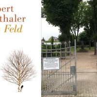 Rezension: Das Feld, Seethaler