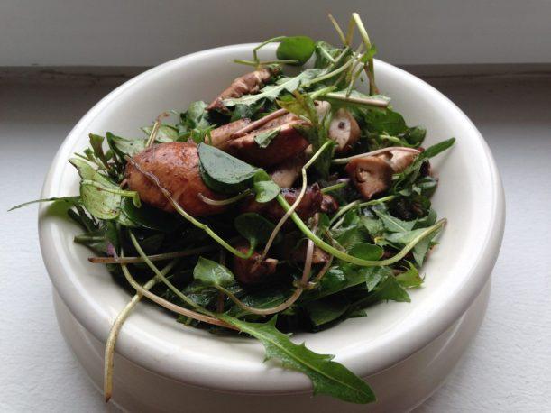 Potulak Wildkräuter Salat mit Champignons