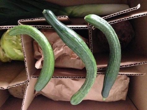 #Gemüseretter Box #Gurke