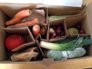 #Gemüseretterbox Nr. 3