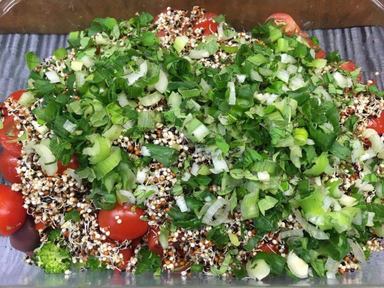 Brokkoli Salat mit getrockneten Tomaten, schwarzen Oliven, Kichererbsen und Quinoa Sprossen