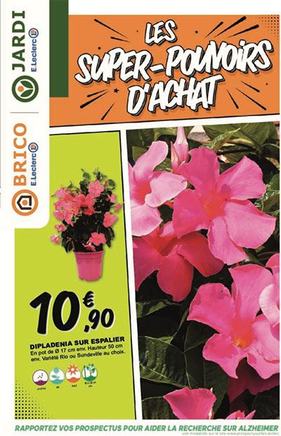 Catalogue Jardin Avril Leclerc Pont L Abbe