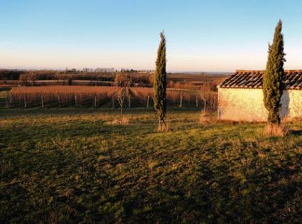Domaine Brin Gaillac
