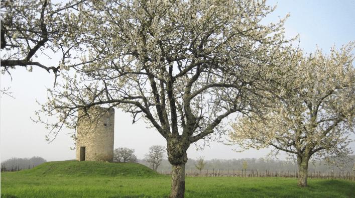 Moulin de Peyronin