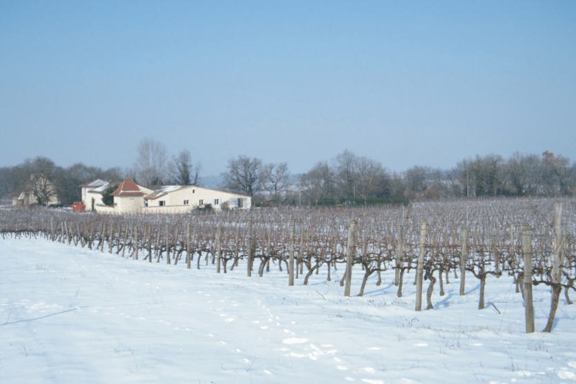 Domaine Jonc Blanc