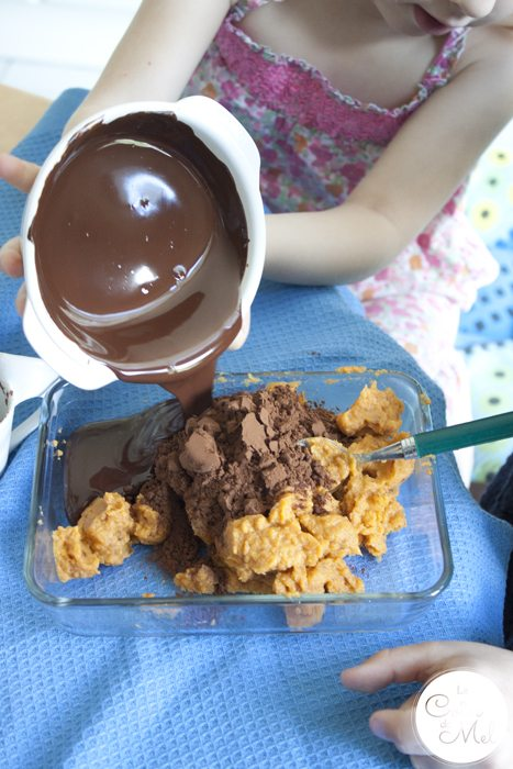 4-Ingredient Chocolate Fudge Brownie Ice Cream – Beanie and Crevette Working Together