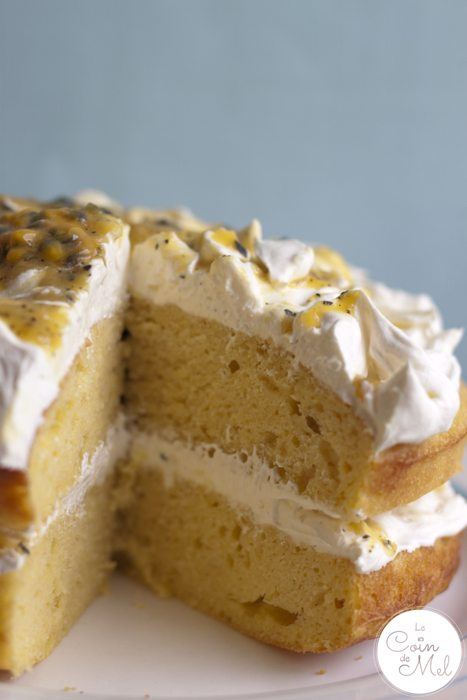 Quick and Easy Tropical Fruit Sponge Cake