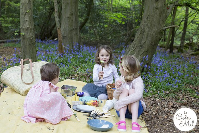 The First Picnic, What Food to Bring & What to Pack