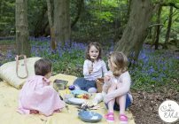 The First Picnic & Ideas for Food & What to Pack