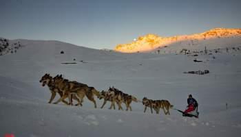 Offre de poste de handler/musher en France, en Auvergne, proche de Superbesse.