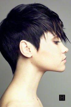 cheveux noirs courts, le coloriste