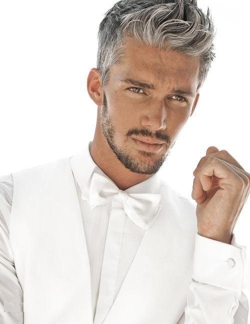 estomper cheveux gris homme coloration des cheveux moderne. Black Bedroom Furniture Sets. Home Design Ideas