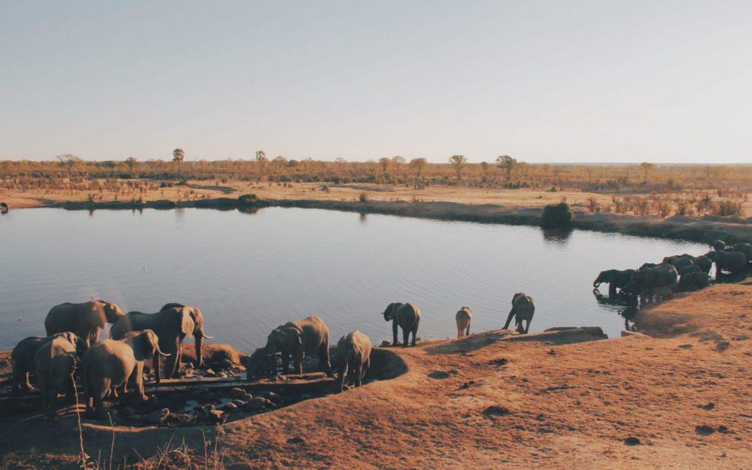 In Africa si sta progettando l'oleodotto più lungo del mondo