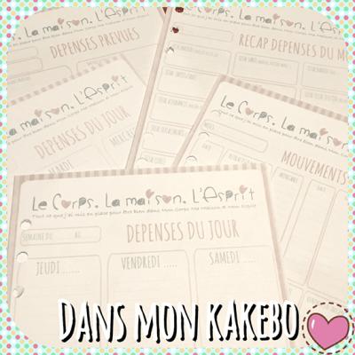 DANS-MON-FILOFAX-#2_-DANS-MON-KAKEBO